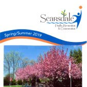 Parks Spring/Summer Registration Cover (jpg)