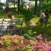 Chase Park Spring Image (jpg)