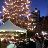 Light the 'Dale Tree Lighting (jpg)