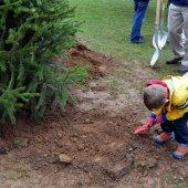 Child Planting Tree (jpg)