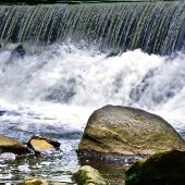 Bronx River Waterfall (jpg)