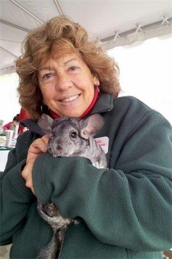 Maura Mandrano Staff Animal Curator, Educator and Animal Rehabber, here, with Chinchilla!