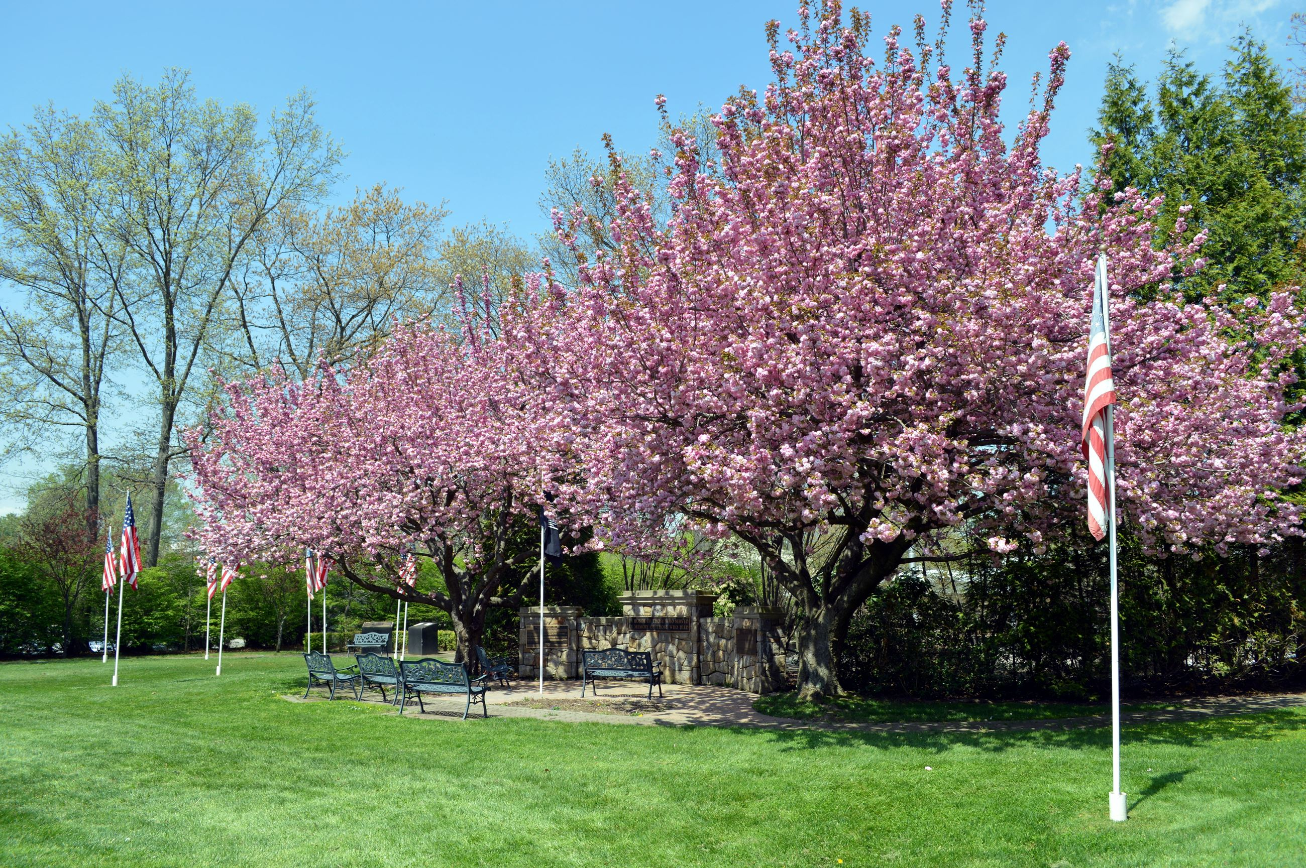 Veteran Memorial Garden 02 (jpg)