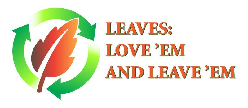 Leaves: Love Them and Leave Them